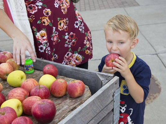 Festival features all things apple