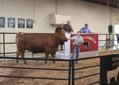 4-H livestock auction again tops $1 million