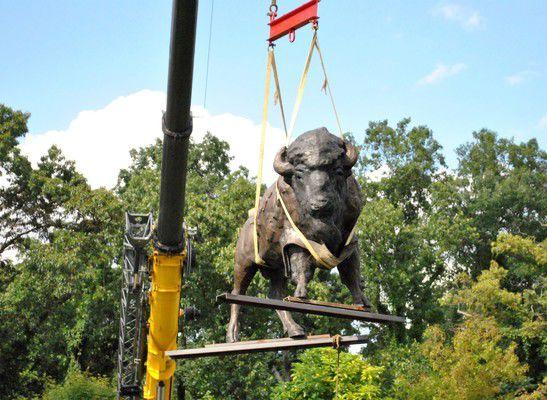 Bronze bison drops in on Wellfield