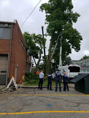 Fallen tree limb prompts costly fire station repairs