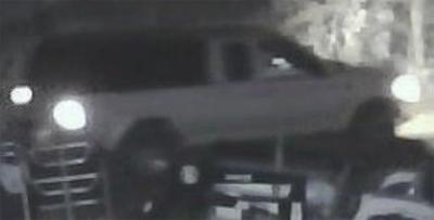 Public's help sought in theft case