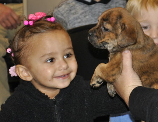 Puppies and paw patrol featured at library