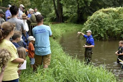 Riverfest theme: 'Livin' in the Stream'