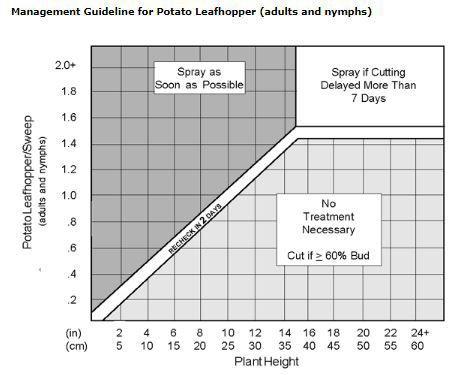 Leafhopper chart