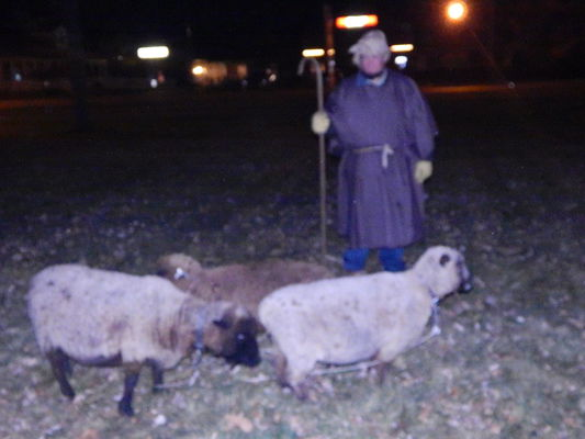 St. Paul's hosts live nativity