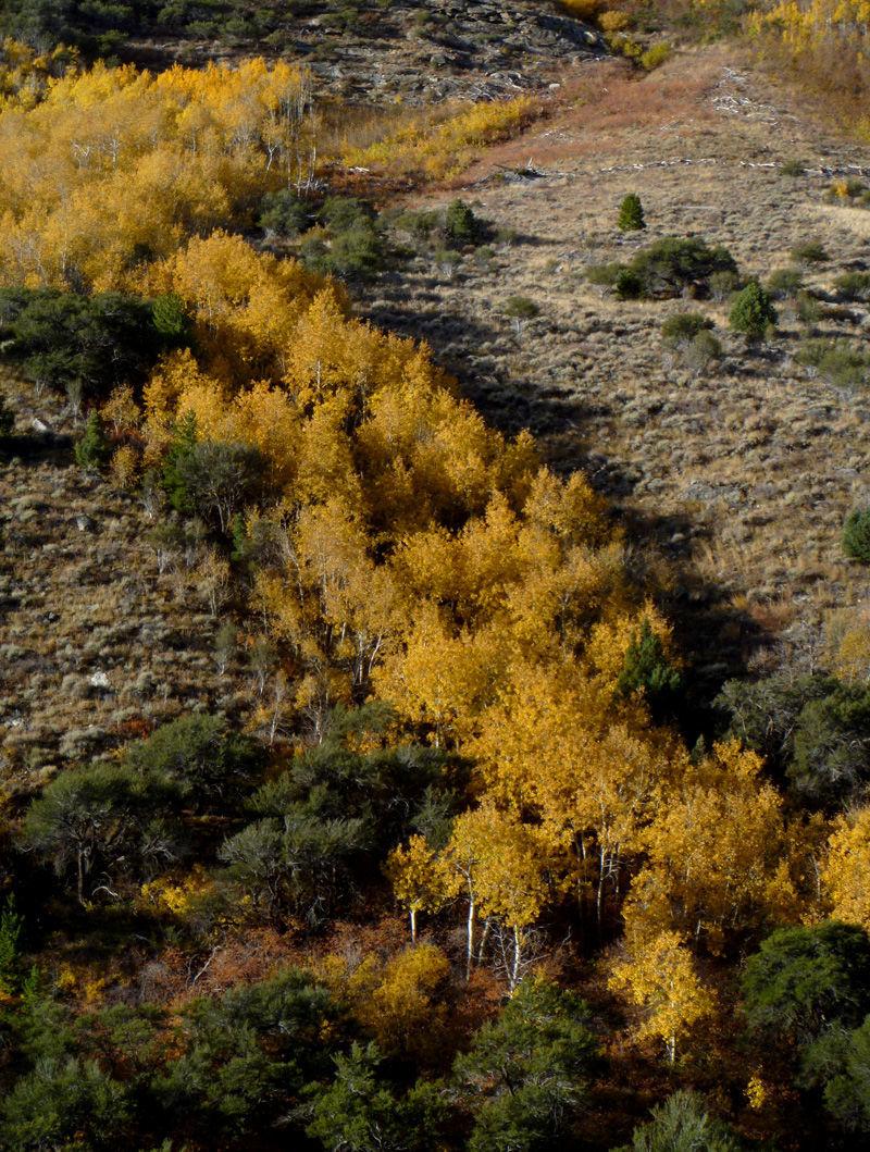 canyon19.jpg