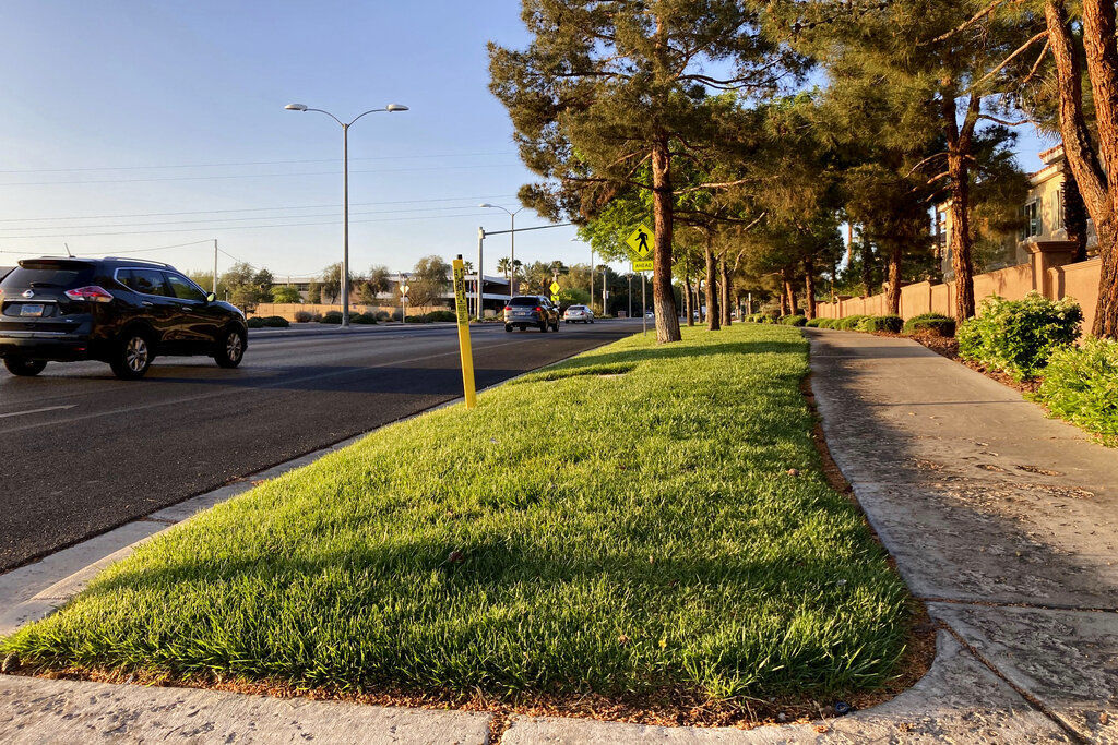 Nevada Legislature Grass Ban