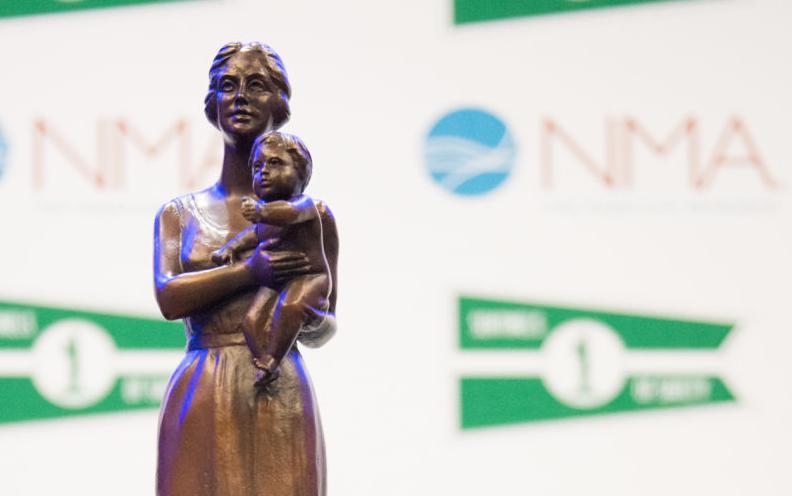 Sentinels of Safety award
