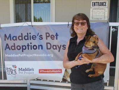 Thirteen animals adopted