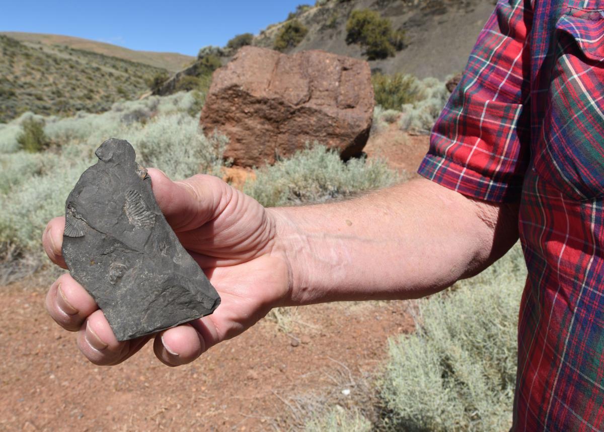 Rockin' the past: Northeastern Nevada's geologic mysteries