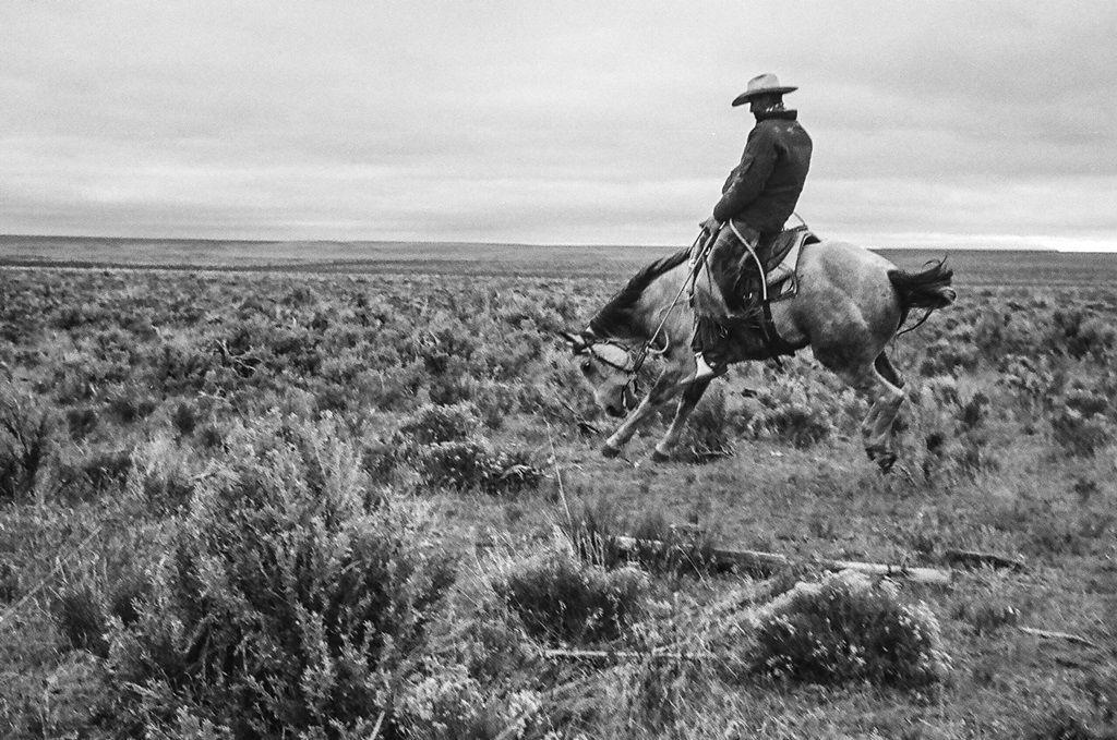 Cowboys documentary