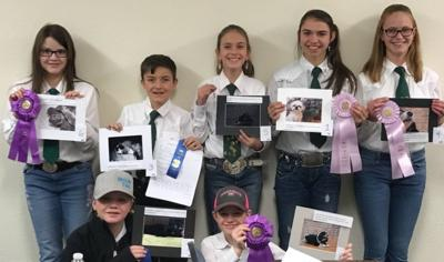 4-H photo contest winners announced
