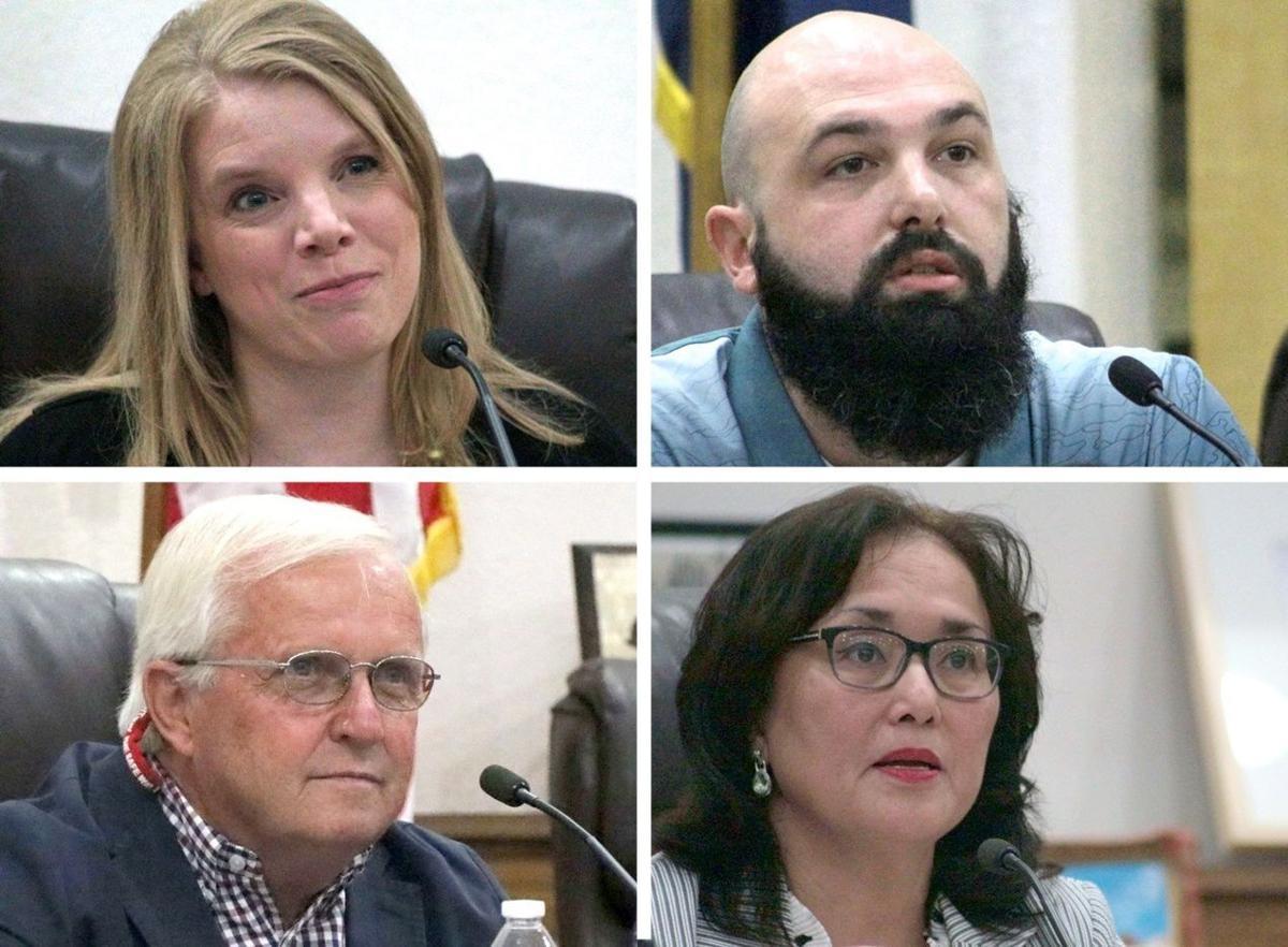 Elko City Council race