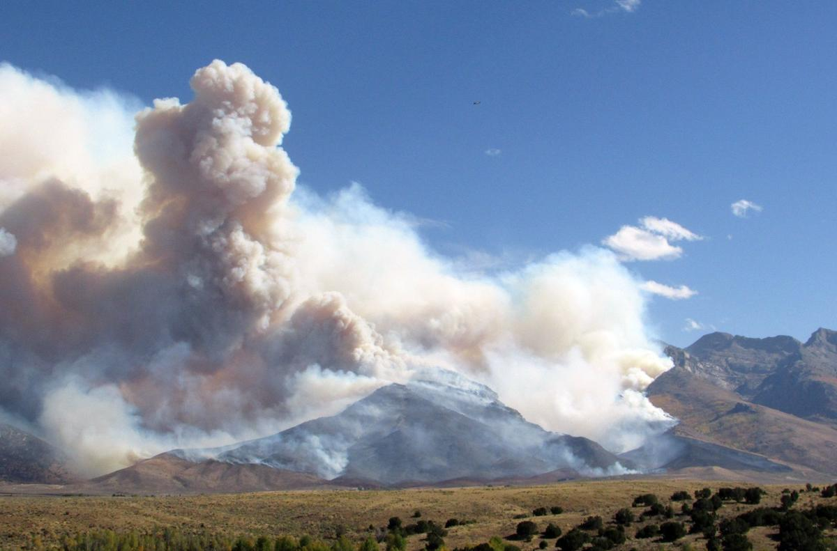 Fire Burns Through Lamoille Canyon Local Elkodaily Com