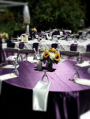 outdoor-event-purple-2.jpg