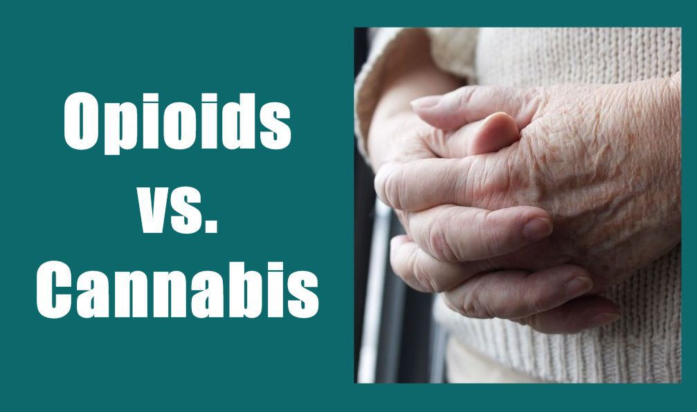 Staying in the shadows: opioids and cannabis in Elko County