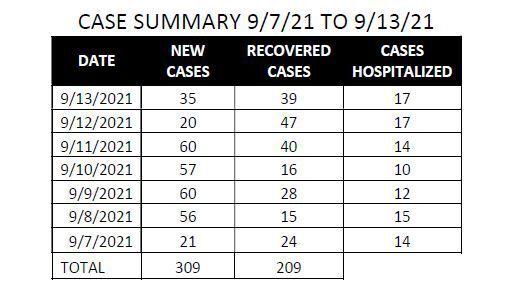 Elko County COVID case summary