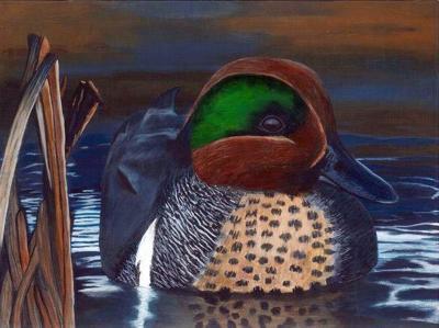 Duck stamp contest winner