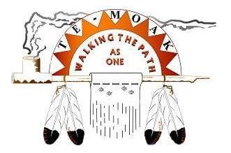 Te-Moak Tribe