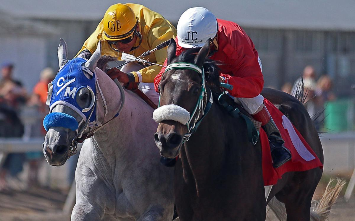 Horse Racing Elko County Fair