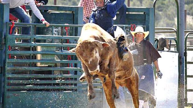 Junior High Finals Rodeo Sports Elkodaily Com