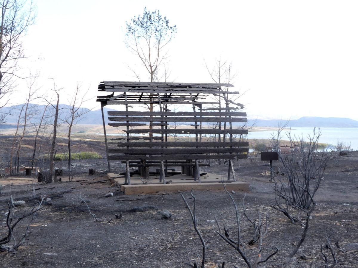 Wildhorse Campground