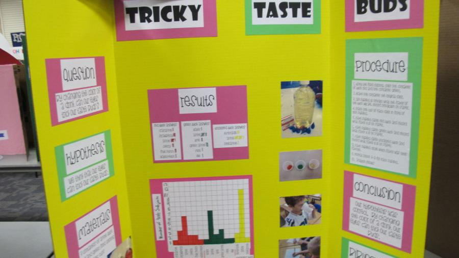 gallery elko county science fair com