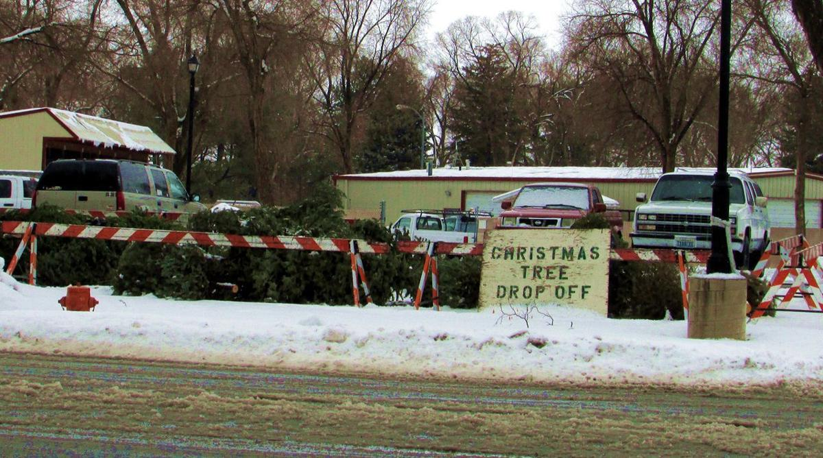 Christmas tree pick-up, drop-off