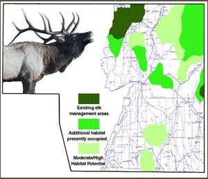 Putting the 'elk' in Elko County | | elkodaily.com on crawford county missouri plat map, minnesota state bordering states map, nevada road conditions map, city of ely nv map,