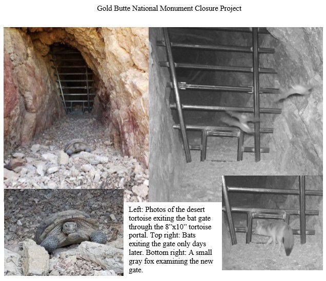 Abandoned Mines - Gold Butte
