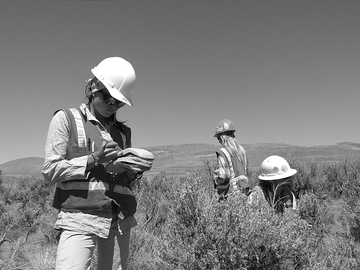 SWCA Environmental Consultants helps mines balance resources