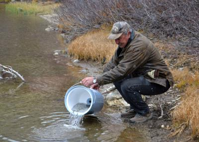 Fish stocking the old-fashioned way | Lifestyles | elkodaily com