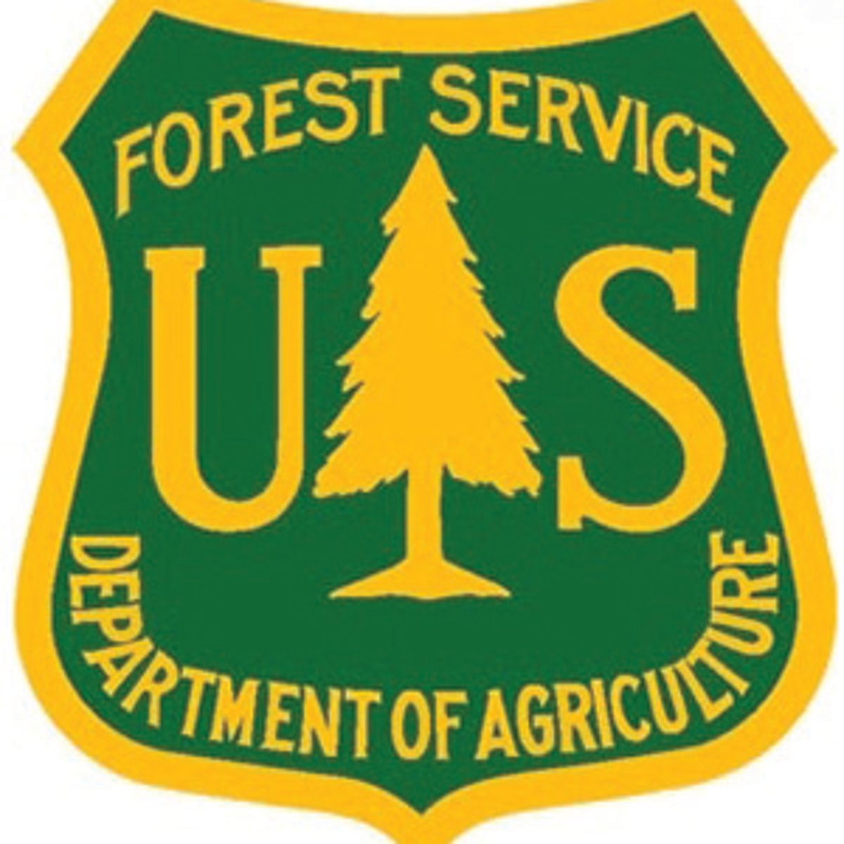 Forest Service road maps still available   News   elkodaily.com