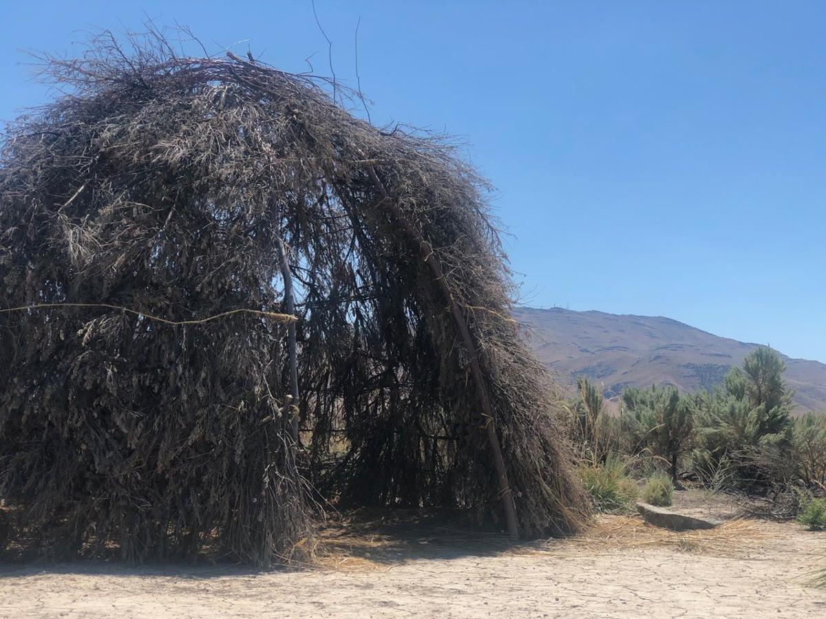 Sage hut