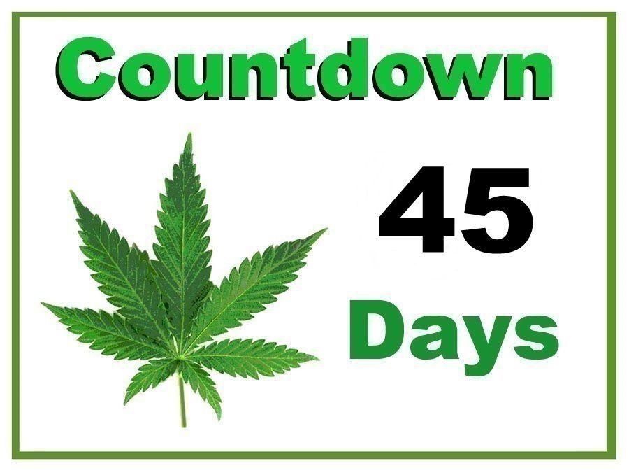 Countdown to Marijuana