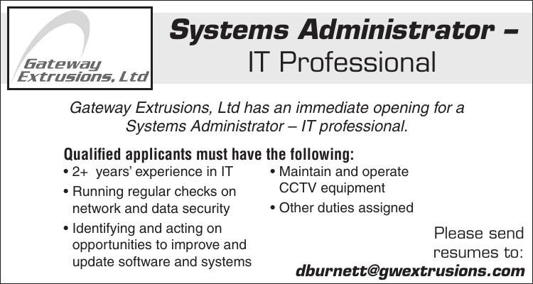 Systems Administrator – IT Professional