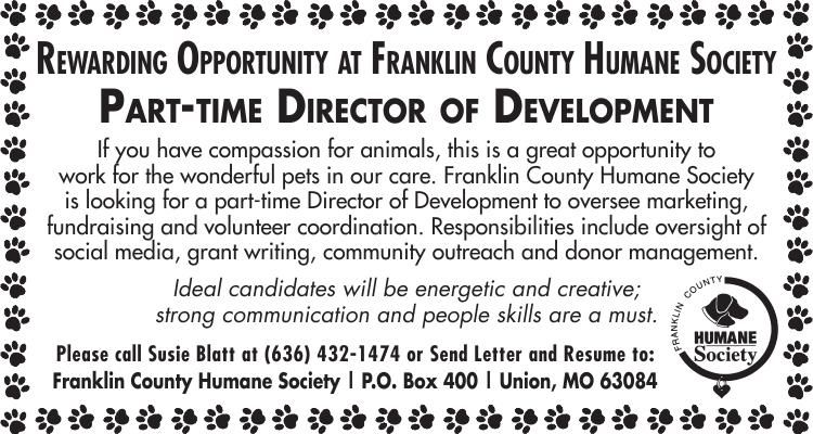 Part Time Director of Development