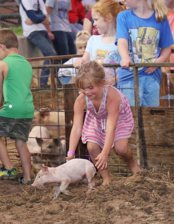Pig Chase NH 2019026.JPG