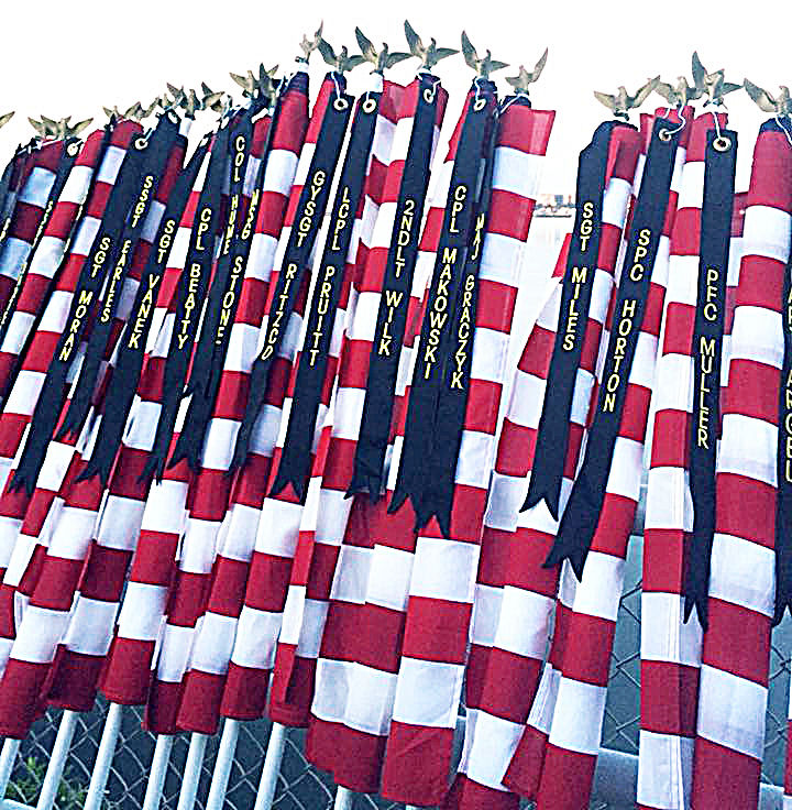 Flag Display