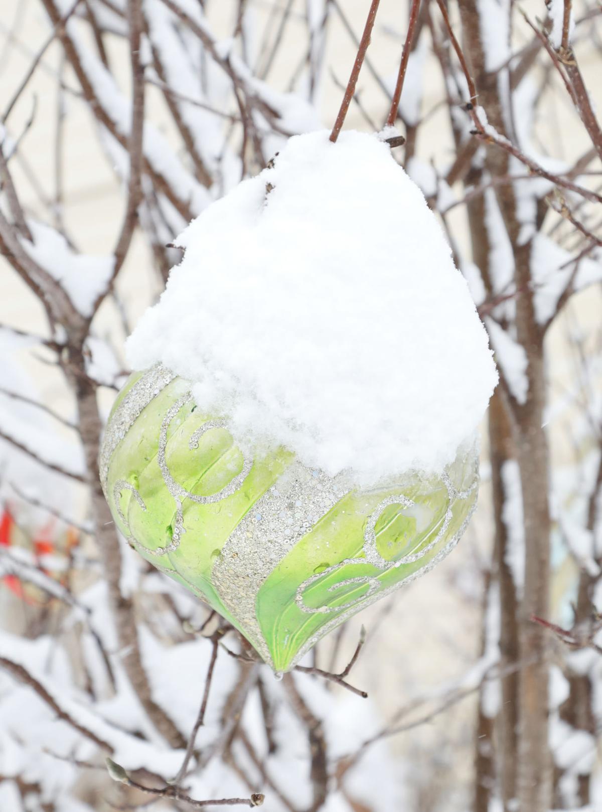 Snow January 2019034.JPG