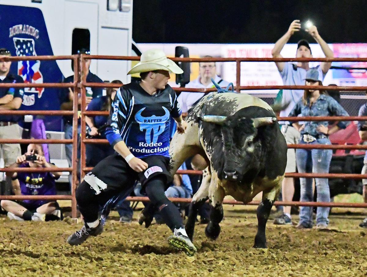 Bullfighting 2018058.JPG