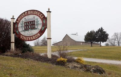 Balducci Vineyards Entrance