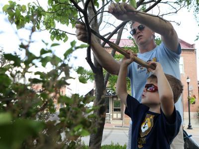 Rodney and Camden Stoyer trim a tree
