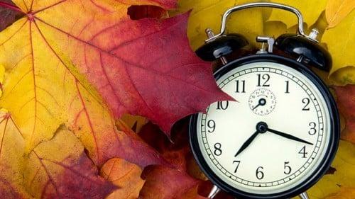 Daylight Saving Time Fall Back