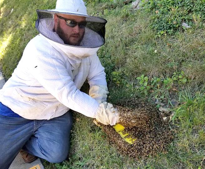Corey Zuroweste, Logan's Bees