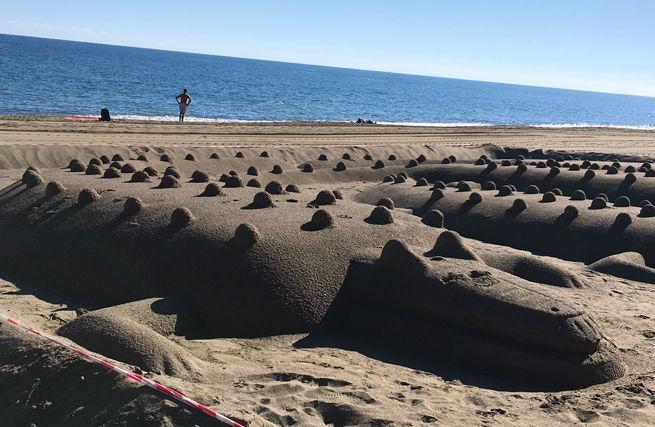 Sand Crocodiles in Malaga