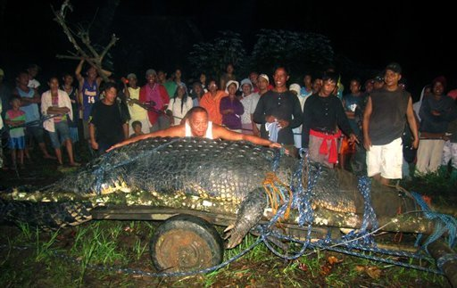 World's Largest Crocodile