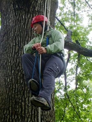 Canopy Climb