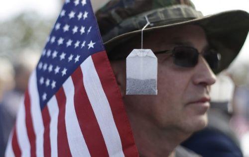 Tea Party Member at Pro Gun Rally