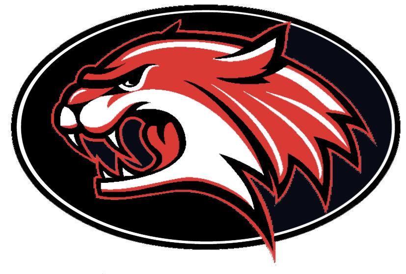 Union Wildcats